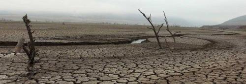 La dramática realidad que enfrenta el Valle del Limarí