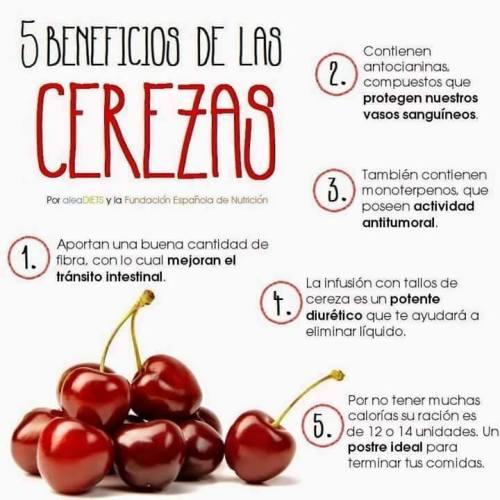 remedios29